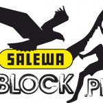 1-salewa_block_logo copy