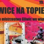 Gliwice na Topie VIII – otwarte mistrzostwa śląska we wspinaczce sportowej dla dzieci i młodzieży