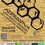 Mistrzostwa Województwa Opolskiego we wspinaczce sportowej