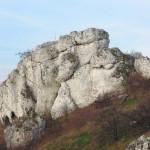 Nowe Drogi 2014: Odcinek 3: Karlin, Podzamcze, Niegowonice