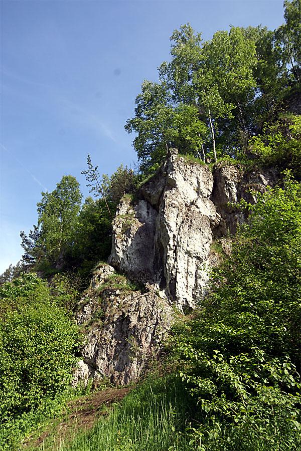 Żabia Lalka w Dolinie Kobylańskiej
