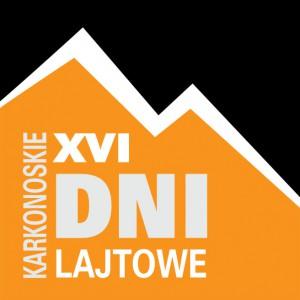 DNI-LOGO-XVI-copy