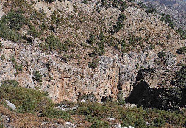 kanion iwona
